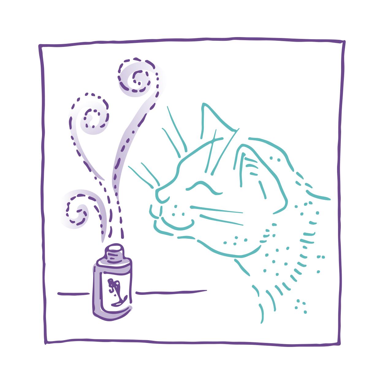 katten en olie